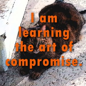 I am learning the art of compromise by Angela Star.